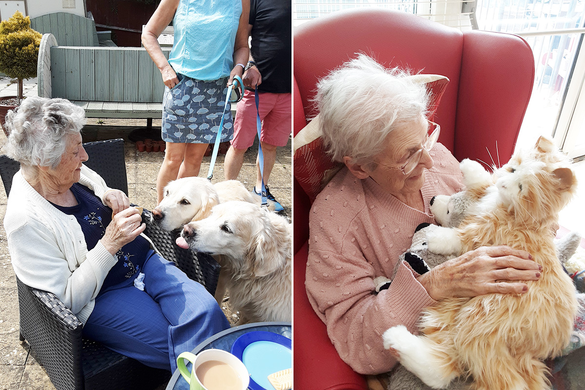 Woodstock Residential Care Home residents enjoy time with furry friends